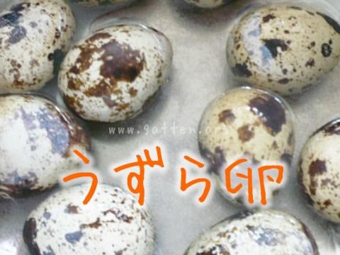 うずら卵.jpg